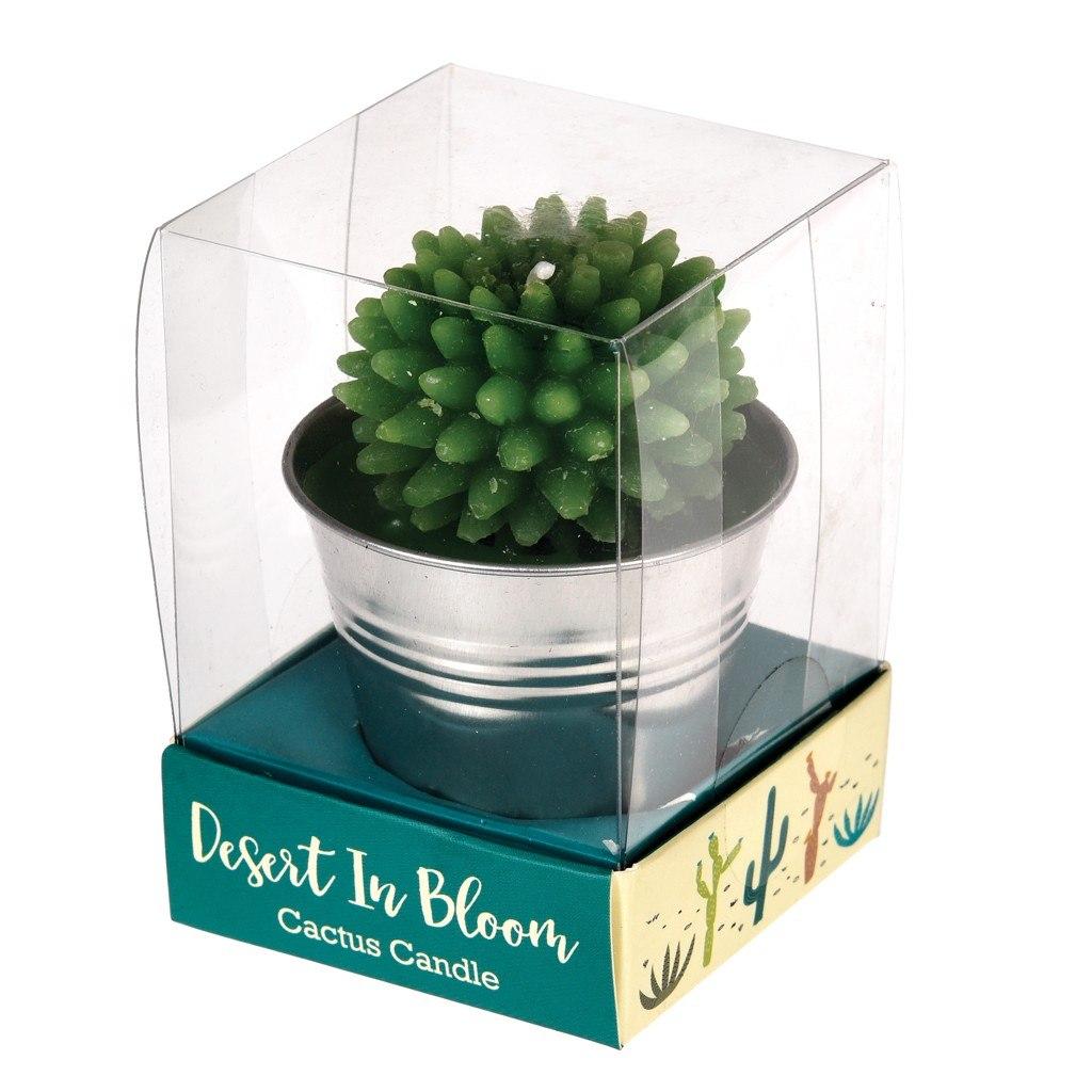 27167-sviecka-kaktus-plechove-vedierko-3