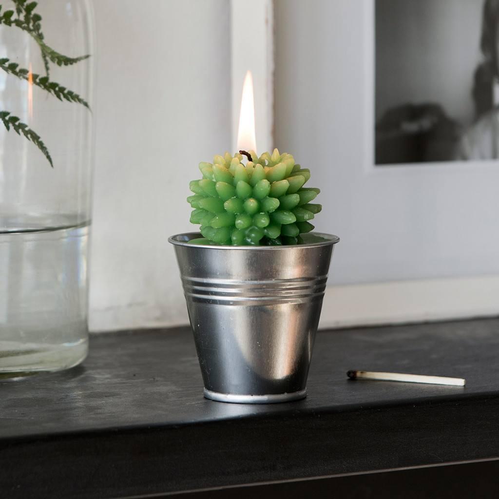 27167-sviecka-kaktus-plechove-vedierko-ls