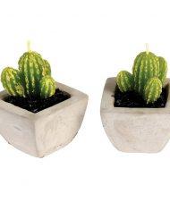 27168-sviecka-kaktus-sada-3