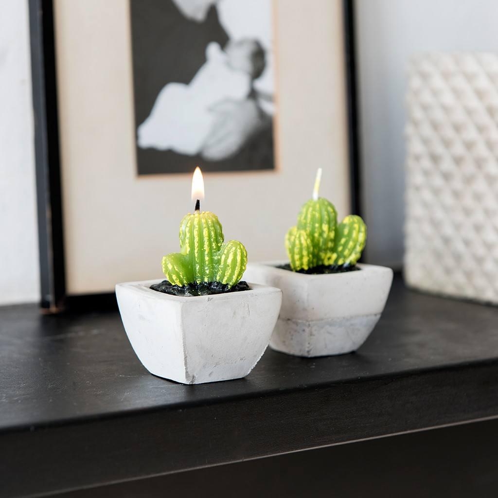 27168-sviecka-kaktus-sada-ls